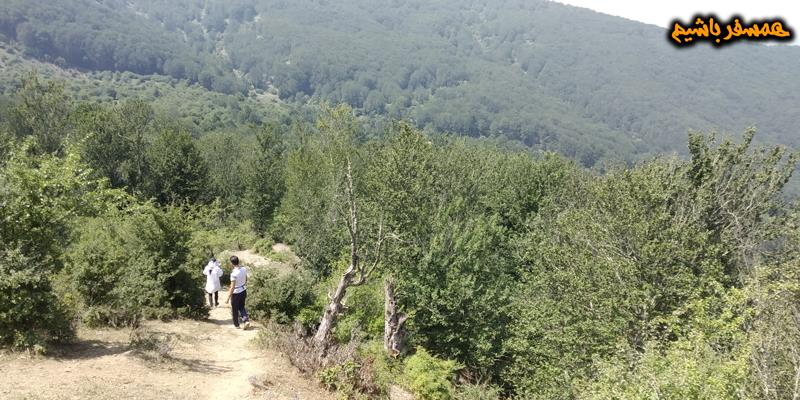 قله امامزاده عباسعلی همسفر باشیم