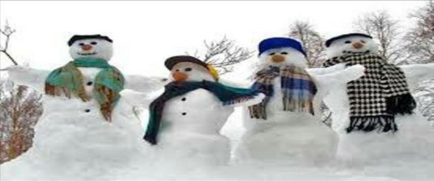 برف بازی فشم