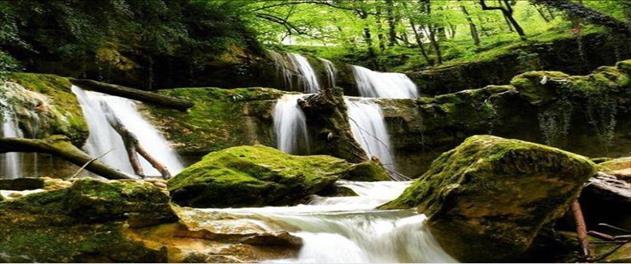 جنگل و آبشار ۷ چشمه لفور